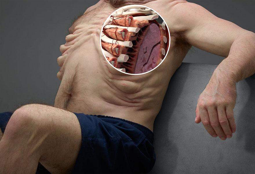 Ребра идеального человека для выживания в ДТ