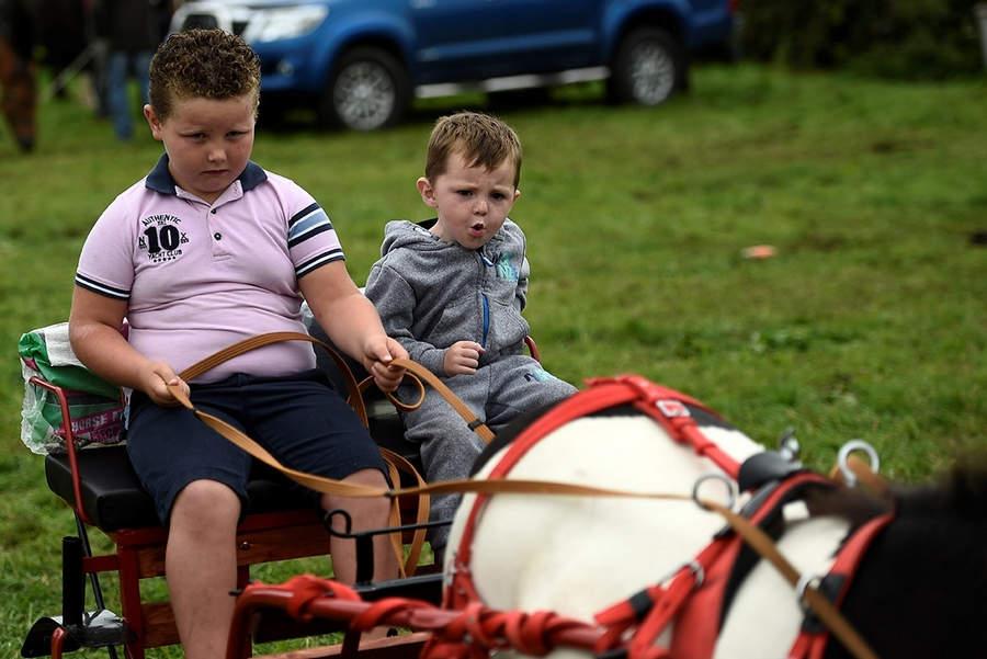 Ярмарка - семейный праздник. Дети катаются на карете, запряженной пони