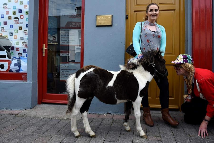 Женщина с недавно купленным пони в первый день ярмарки