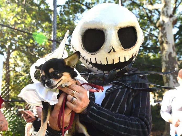 Собачий Хэллоуин: Tompkins Square's Dog Parade 2017