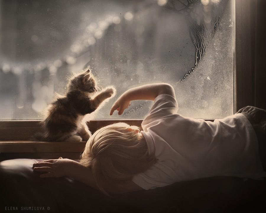 Доброта Автор фото: Елена Шумилова