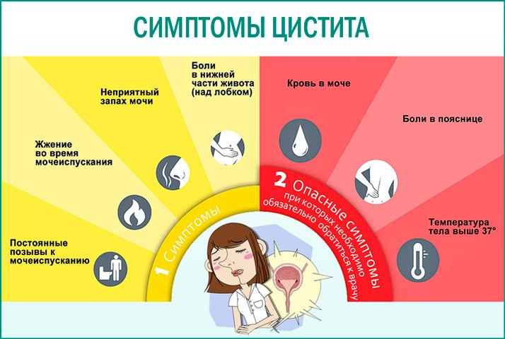 Признаки и симптомы Цистита в картинке