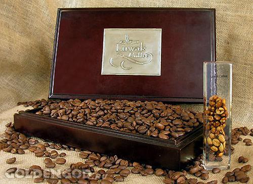 """Самый дорогой кофе в мире – """"Kopi Luwak"""""""