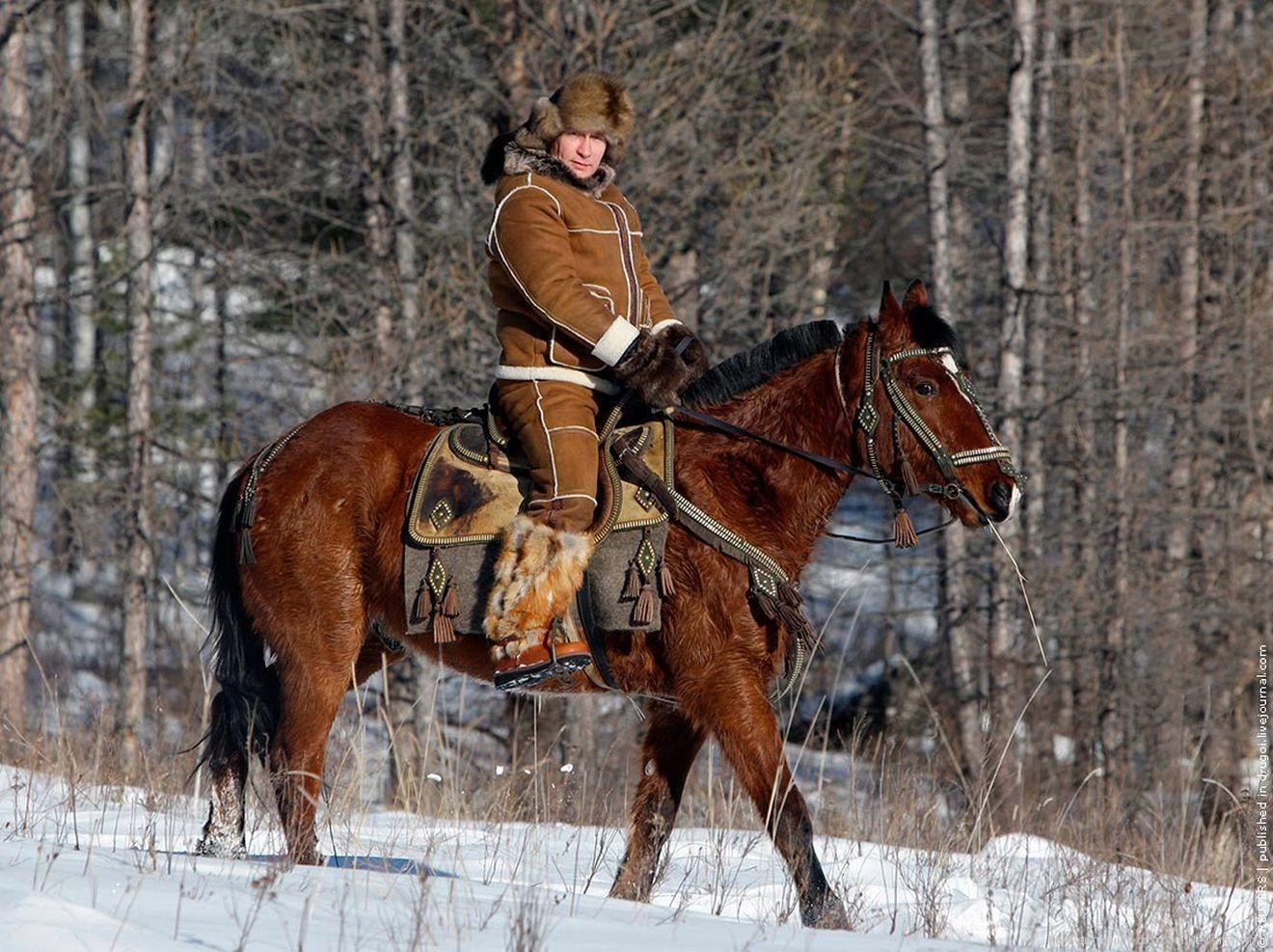 Отдых на коне