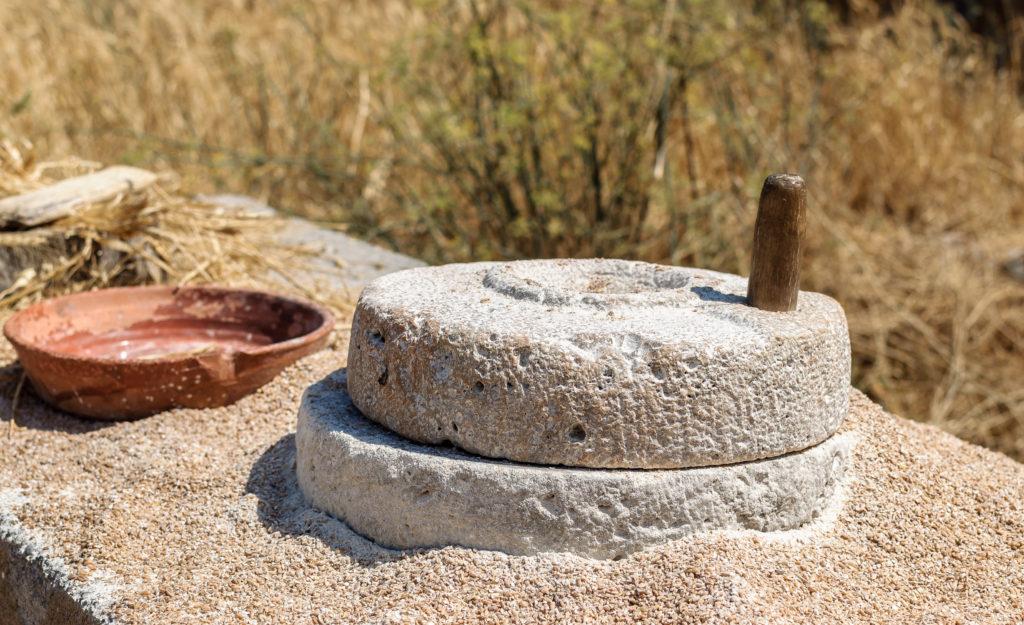 Состав древнего хлеба возраста 14 тыс лет был установлен в Иордании