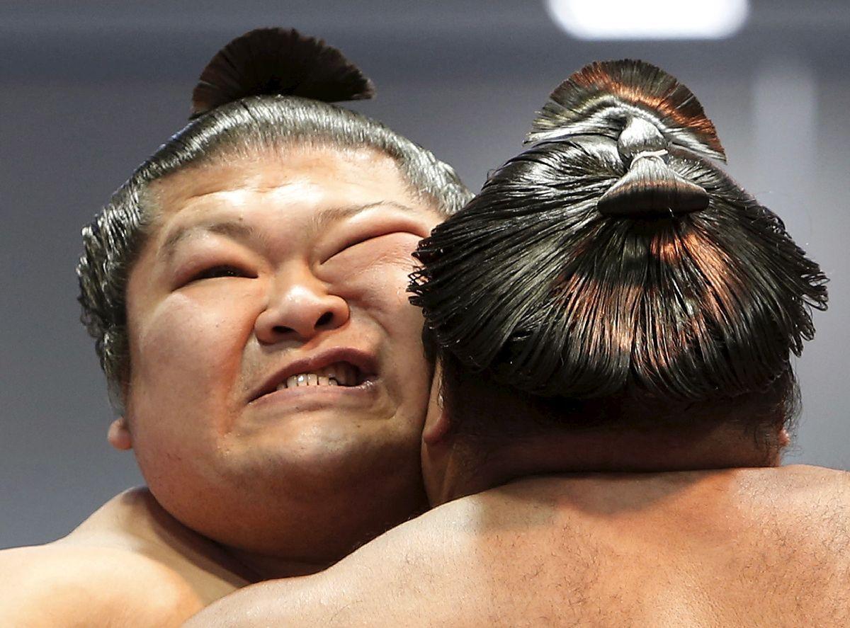Современная японская борьба сумо в фото