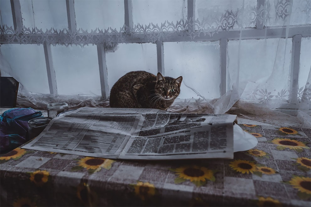Чернобыльская область отчуждения в фото